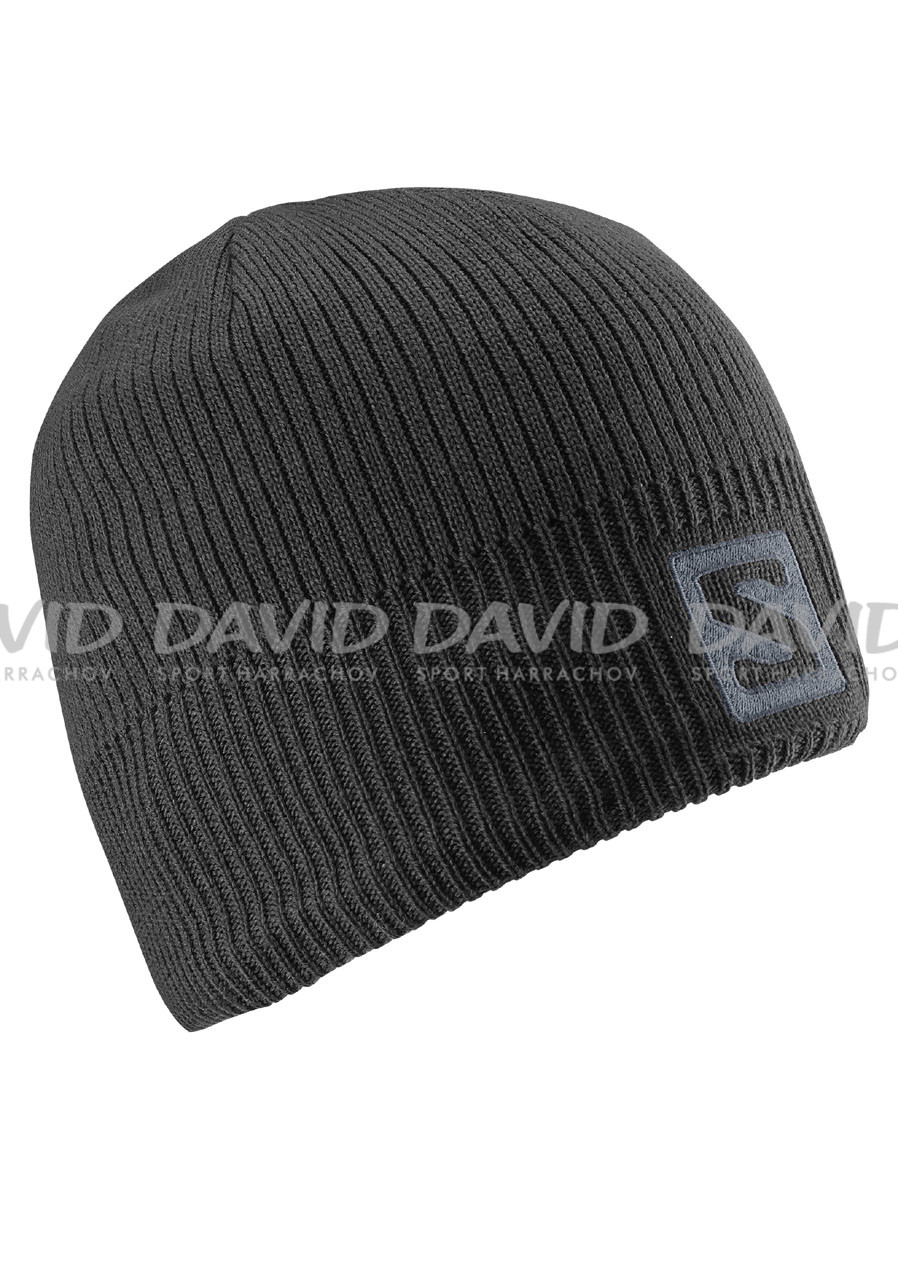 Salomon Logo Beanie Black